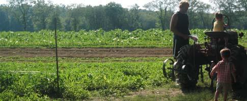 Farmer and Little Farmers